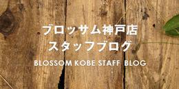 BLOSSOM神戸店ブログ