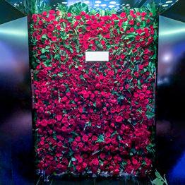 フラワーウォール(赤バラ)